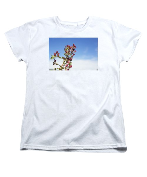 Organic Handpicked Home Orchard Raspberries,blackberries From Bu Women's T-Shirt (Standard Cut) by Jingjits Photography