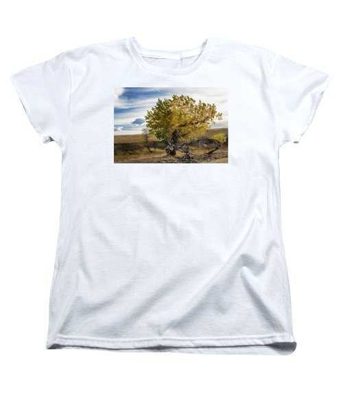 Painted By Nature Women's T-Shirt (Standard Cut) by Alana Thrower