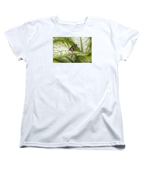 Papilio Demoleus Women's T-Shirt (Standard Cut) by Goyo Ambrosio