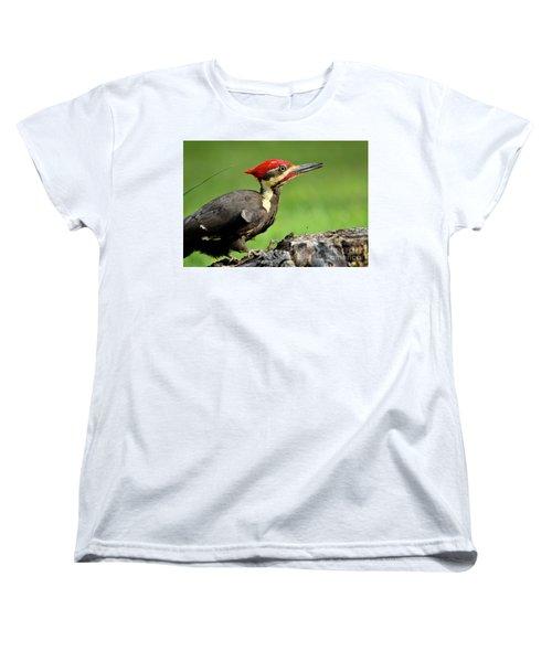 Pileated 2 Women's T-Shirt (Standard Cut) by Douglas Stucky