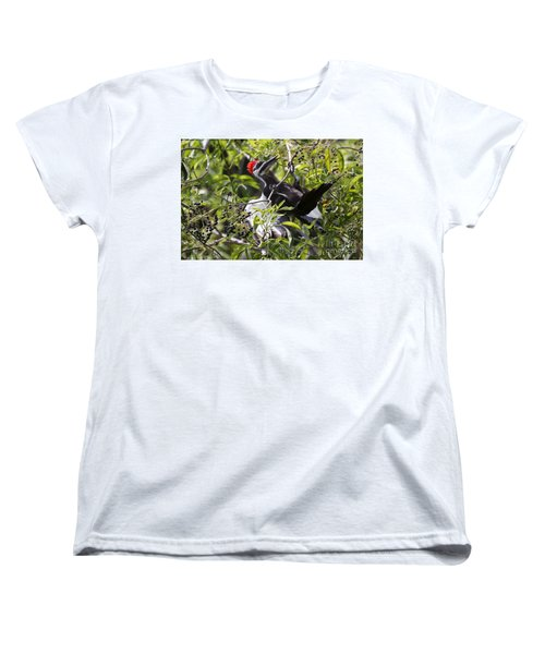 Women's T-Shirt (Standard Cut) featuring the photograph Pileated Pull-up by Myrna Bradshaw