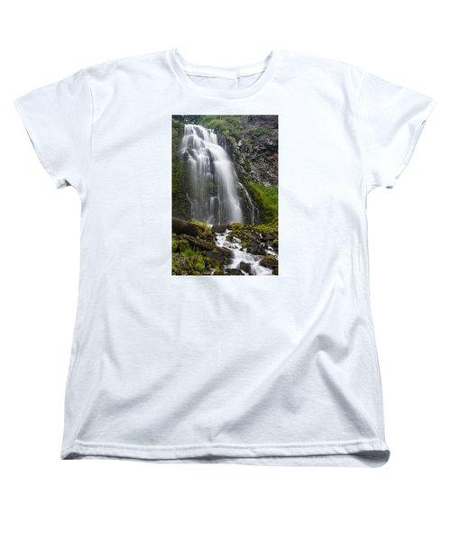 Plaikni Falls Women's T-Shirt (Standard Cut) by Greg Nyquist