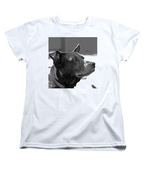 Please? Women's T-Shirt (Standard Cut)