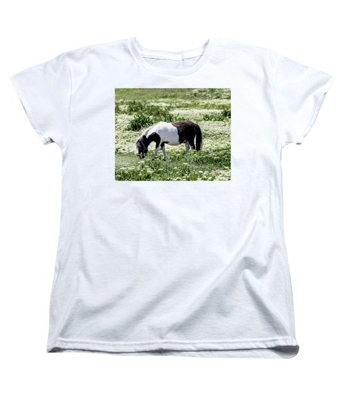 Pretty Painted Pony Women's T-Shirt (Standard Cut) by James BO Insogna