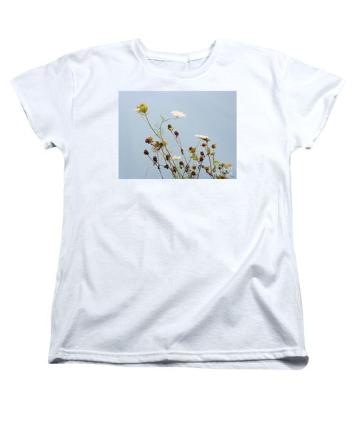 Queen Anne's Lace And Dried Clovers Women's T-Shirt (Standard Cut) by Lise Winne
