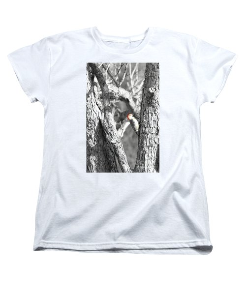 Women's T-Shirt (Standard Cut) featuring the photograph Red-bellied Woodpecker by Benanne Stiens