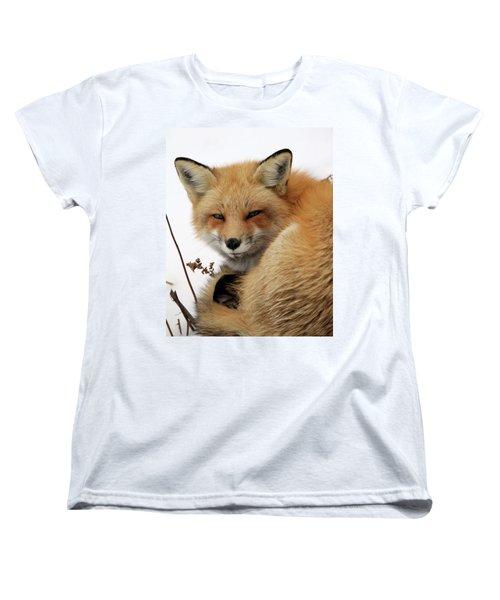 Women's T-Shirt (Standard Cut) featuring the photograph Red Fox In Snow by Doris Potter