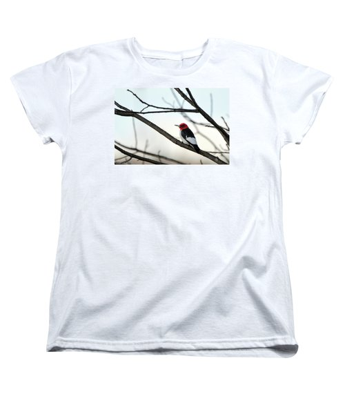 Red-headed Woodpecker Women's T-Shirt (Standard Cut)