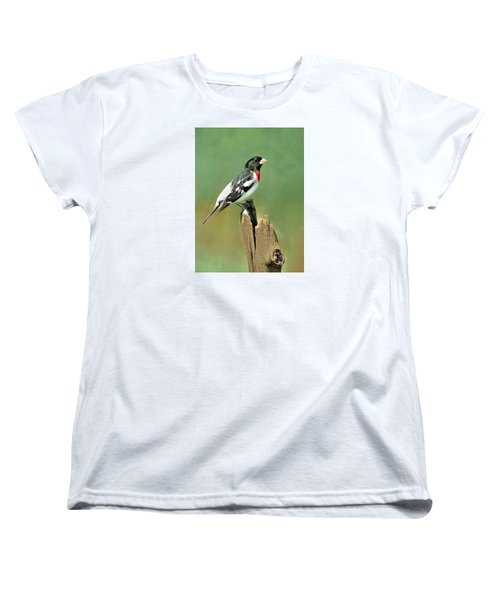 Rose Breasted Grosbeak Women's T-Shirt (Standard Cut) by Marion Johnson