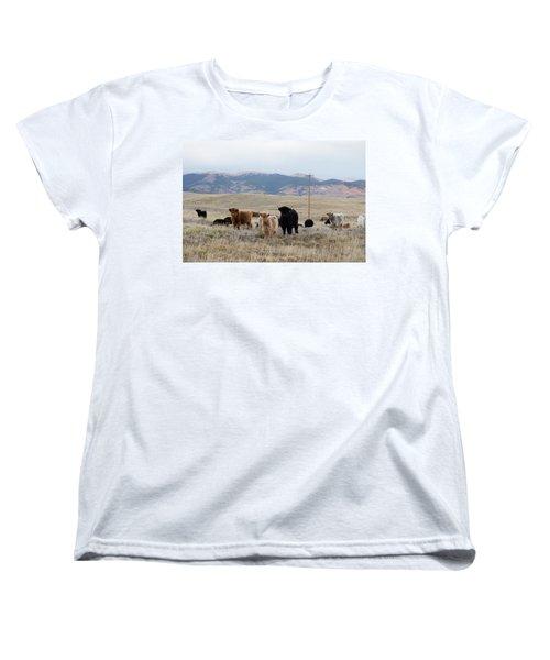 Shaggy-coated Cattle Near Jefferson Women's T-Shirt (Standard Cut) by Carol M Highsmith