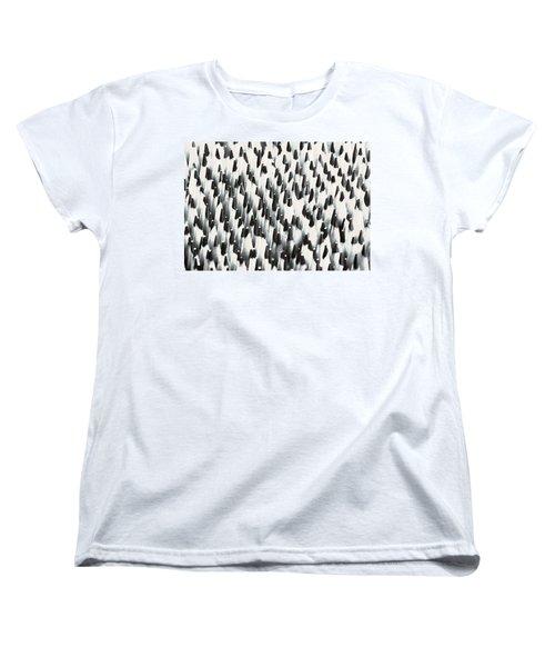Sharp Wooden Pencils Women's T-Shirt (Standard Cut) by Evgeniy Lankin