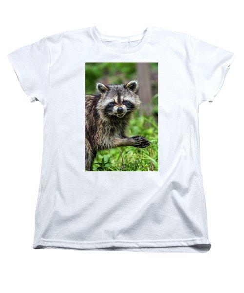 Smiling Raccoon Women's T-Shirt (Standard Cut) by Paul Freidlund