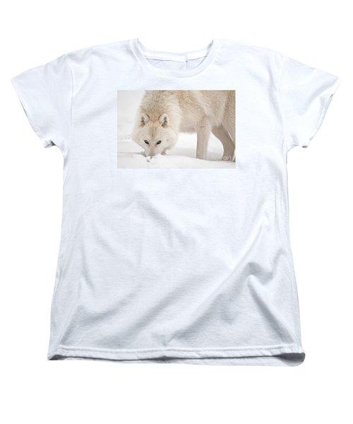 Snow Nose Women's T-Shirt (Standard Cut) by Michael Cummings
