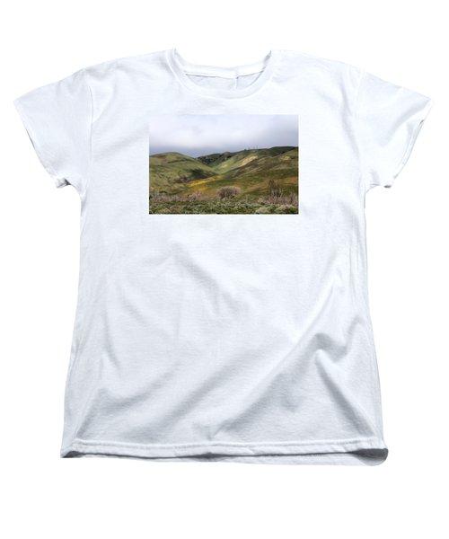 Spring At Door Women's T-Shirt (Standard Cut) by Viktor Savchenko