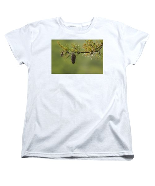 Spring Rain And Pinecone Women's T-Shirt (Standard Cut) by Michael Eingle