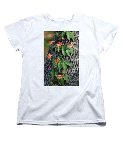 Women's T-Shirt (Standard Cut) featuring the photograph Vinery by Skip Willits