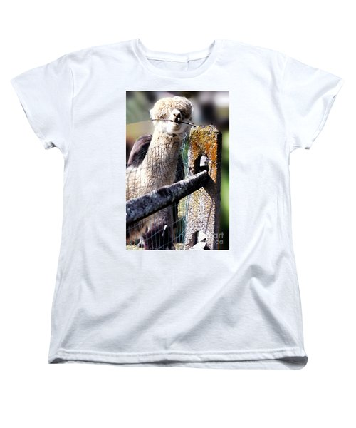 Women's T-Shirt (Standard Cut) featuring the photograph Sticks Taste Good by Polly Peacock