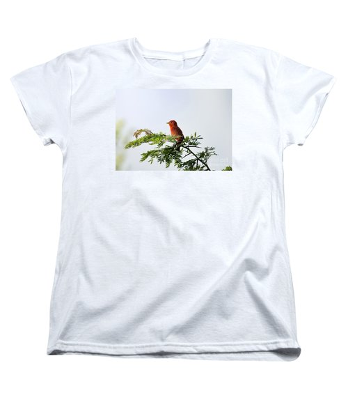 Women's T-Shirt (Standard Cut) featuring the photograph Summer Tanager In Mesquite Scrub by Robert Frederick