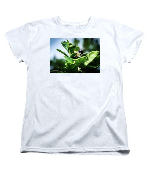 Sweet Bee Women's T-Shirt (Standard Cut)