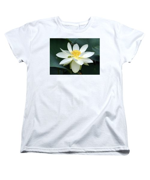 Women's T-Shirt (Standard Cut) featuring the photograph The Lotus Flower The Frog And The Bee by Gary Crockett