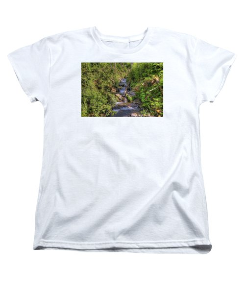 The Quinault Stream 2 Women's T-Shirt (Standard Cut) by Richard J Cassato