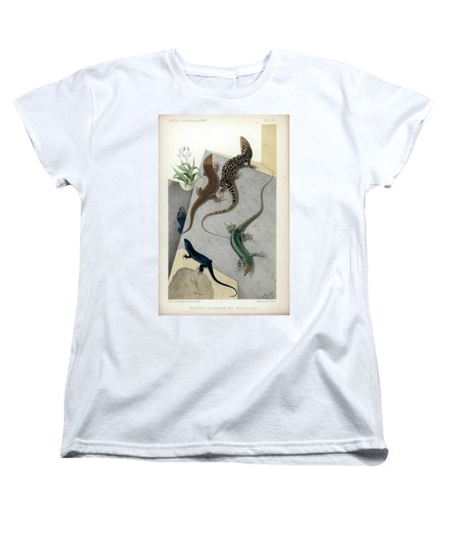 Varieties Of Wall Lizard Women's T-Shirt (Standard Cut) by Jacques von Bedriaga
