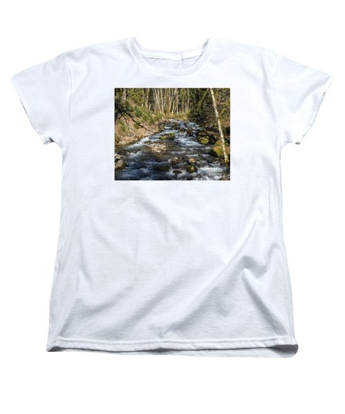 Views Of A Stream, Iv Women's T-Shirt (Standard Cut) by Chuck Flewelling