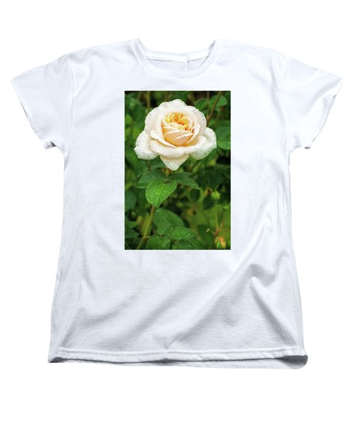 Virtue Of Pureness Women's T-Shirt (Standard Cut)