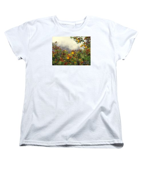 Volcano Scene Reunion Island Women's T-Shirt (Standard Cut) by John Potts