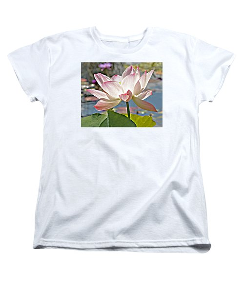 Water Lily Women's T-Shirt (Standard Cut) by Catherine Alfidi