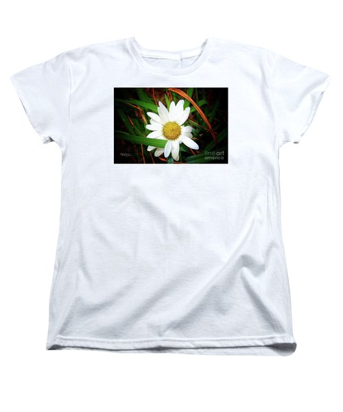 White Daisy Women's T-Shirt (Standard Cut) by Inspirational Photo Creations Audrey Woods