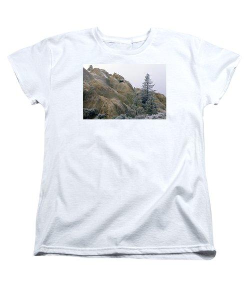 Winter Wind Women's T-Shirt (Standard Cut)