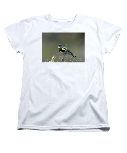 Yellow-rumped Warbler Women's T-Shirt (Standard Cut) by Mike Dawson