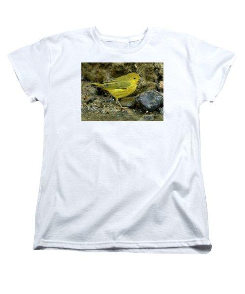 Yellow Warbler Women's T-Shirt (Standard Cut) by Doug Herr