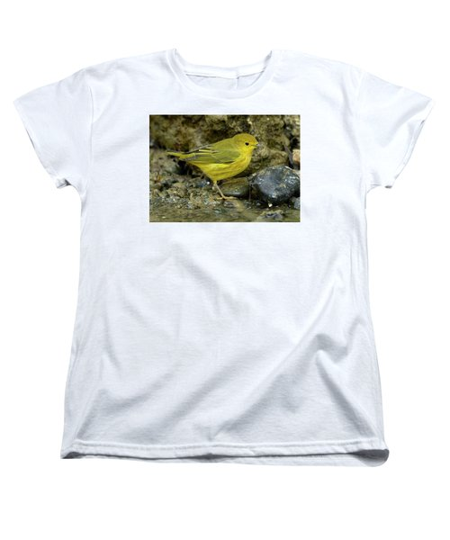 Yellow Warbler Women's T-Shirt (Standard Cut)
