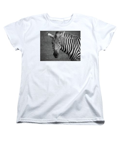 Zebra Women's T-Shirt (Standard Cut) by Trace Kittrell