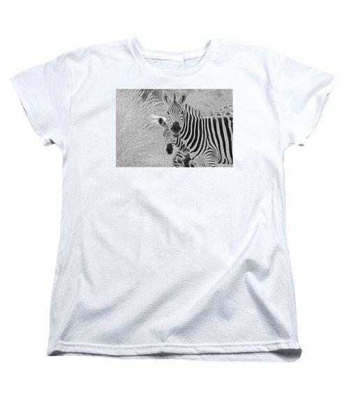 Zebras Women's T-Shirt (Standard Cut) by Patrick Kain