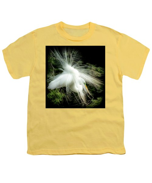 Elegance Of Creation Youth T-Shirt