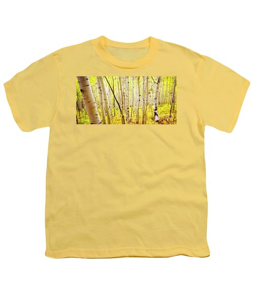 Aspen Grove II Youth T-Shirt
