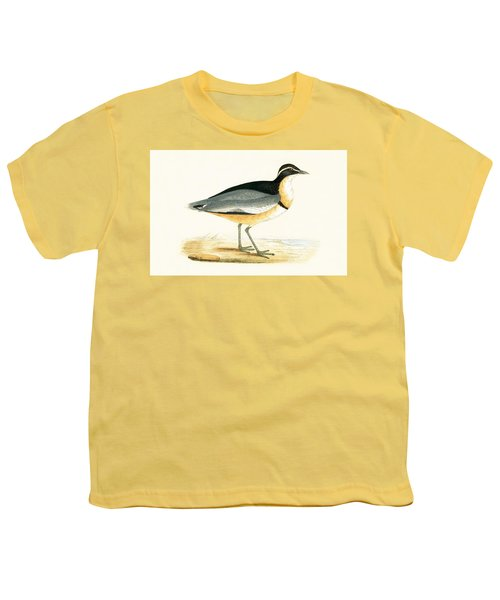 Black Headed Plover Youth T-Shirt by English School