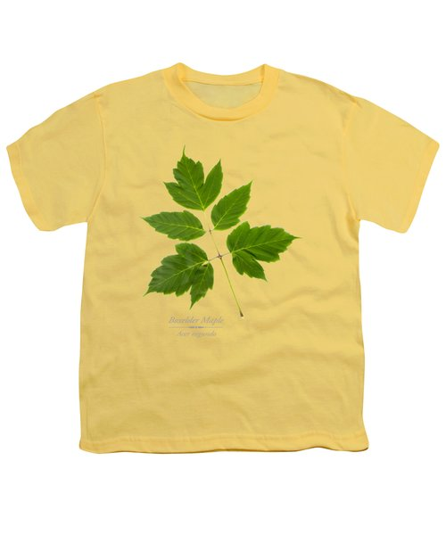 Box Elder Maple Youth T-Shirt by Christina Rollo