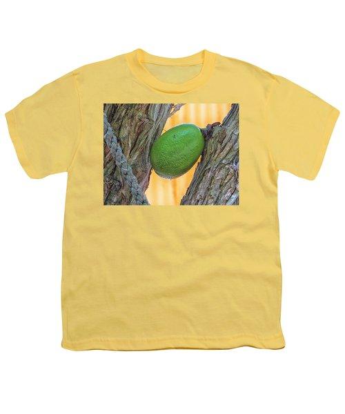 Calabash Fruit Youth T-Shirt