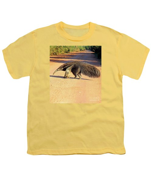 Giant Anteater Crosses The Transpantaneira Highway In Brazil Youth T-Shirt by Nareeta Martin