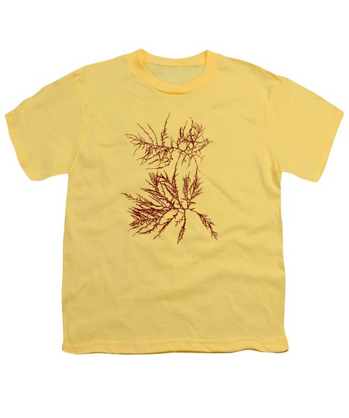 Ocean Seaweed Plant Art Laurencia Tenuissima Youth T-Shirt by Christina Rollo
