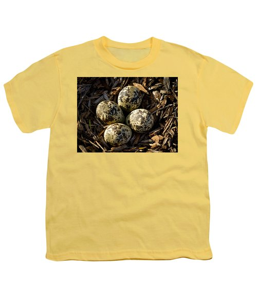 Quartet Of Killdeer Eggs By Jean Noren Youth T-Shirt by Jean Noren
