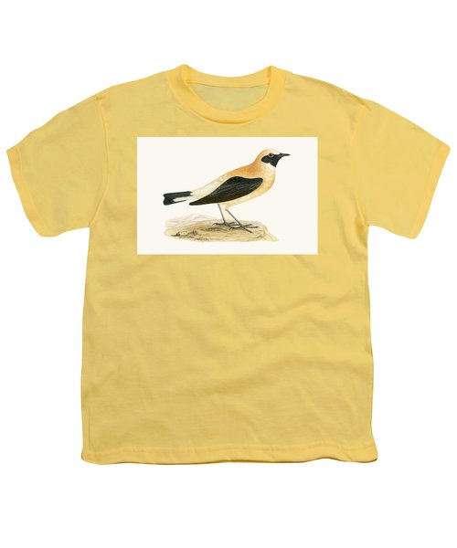 Russet Wheatear Youth T-Shirt by English School