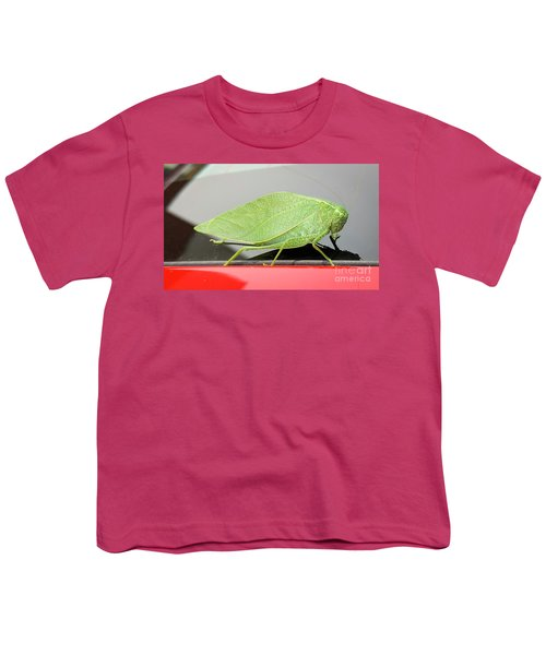 Katydids- Bush Crickets Youth T-Shirt