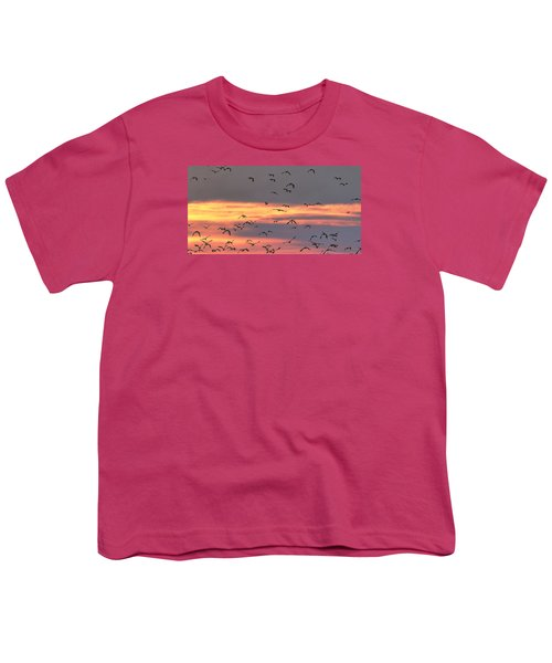 Lapwings At Sunset Youth T-Shirt by Jeff Townsend