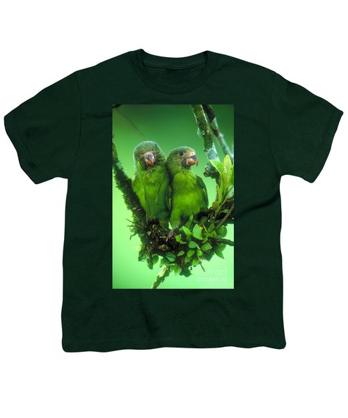 Cobalt-winged Parakeets Youth T-Shirt by Art Wolfe