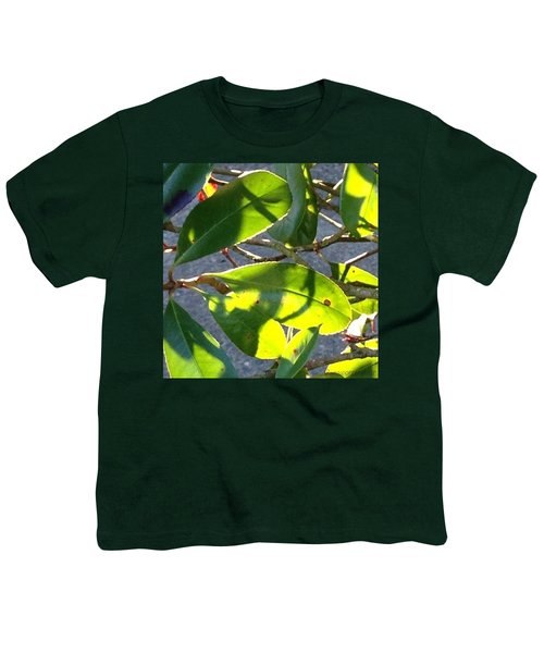 Backlit Leaves, Afternoon Light, Late Youth T-Shirt